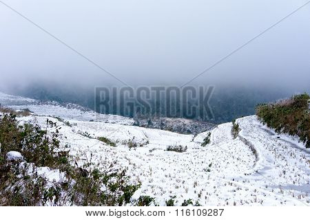 snow covered terraced rice field in Vietnam