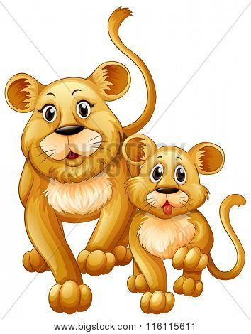 Mother lion and little cub illustration