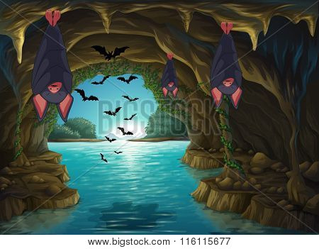 Bats living in the dark cave illustration