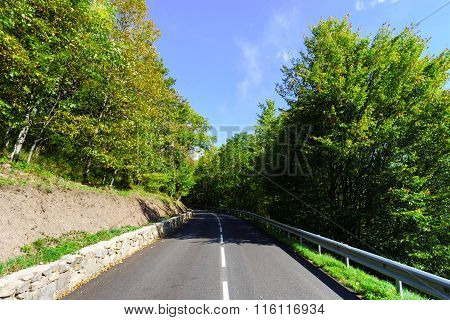 Winding Asphalt Road In Countryside Region Of France