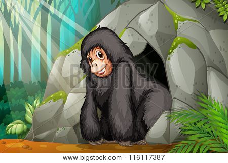 Chimpanzee standing in front of the cave illustration
