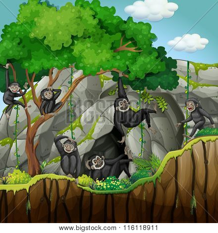 Group of gibbons climbing the tree illustration