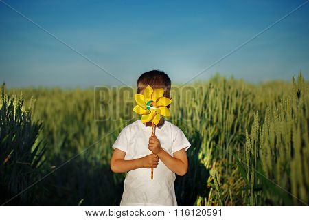 Little Boy Hides Behind Yellow Pinwheel On Blue Sky And Green Field Background.