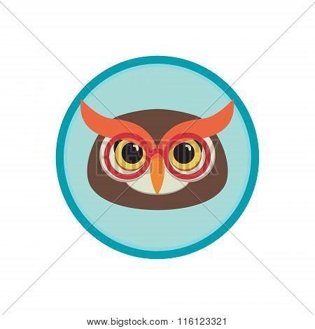Owl Head Illustration.