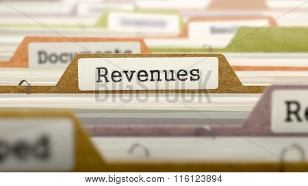 Folder in Catalog Marked as Revenues.