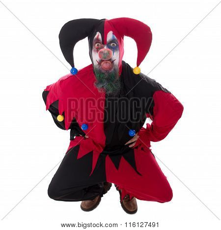 Evil Jester Sticking Out The Tounge, Isolated On White