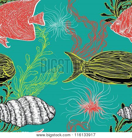 Seamless pattern with collection of sea shell, marine plants, seaweed and tropical fish. Vintage set