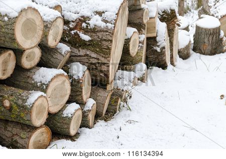 snow covered firewood stack at winter