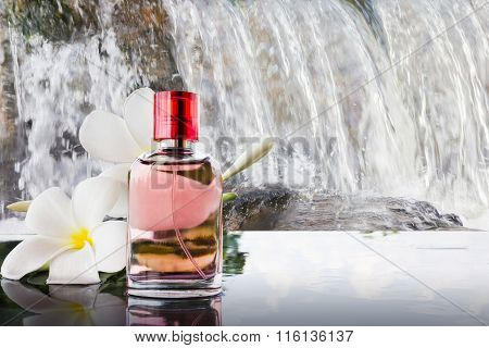 Single Bottle Of Sweet Pink Fragrant Perfume Decorated With White Flower And Waterfall Background