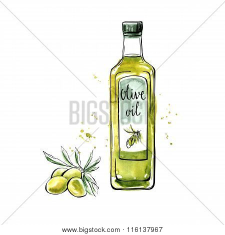 Vector Watercolor Olive Oil Bottle