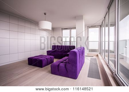Purple And Cozy Furnitures