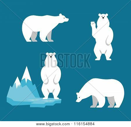 Polar Bears collection. Funny cartoon character.