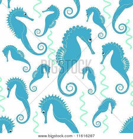 sea horse pattern