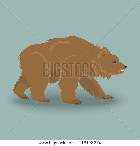 Kodiak Angry Bear