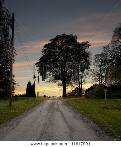 Rural Road At Night