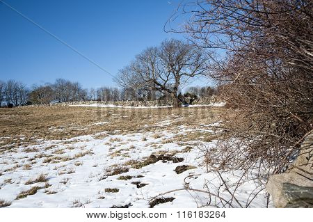 Snow On Farmland In Winter