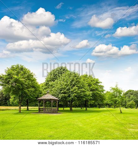 Park Trees Green Grass Blue Sky. Garden. Golf Field
