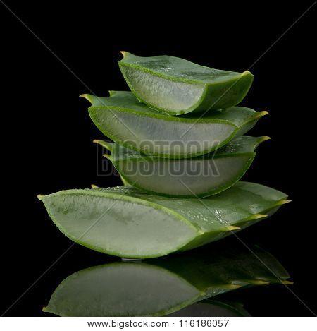 Sliced Aloe Leaf