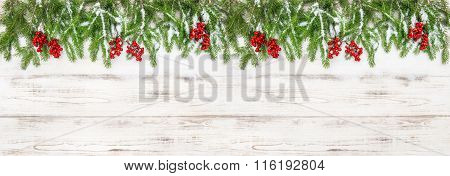 Christmas Decoration. Holidays Banner. Evergreen Tree Branches