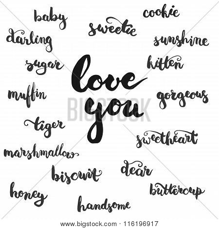 Set of brushpen lettering and calligraphy affectionate nickname for your significant other with such word as baby darling sugar biscuit and other. Template for invitations card for Valentines Day.
