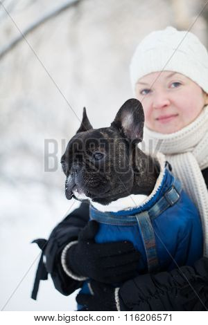 Bulldog In The Arms Of A Woman