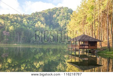The Wooden Hut In The Forest