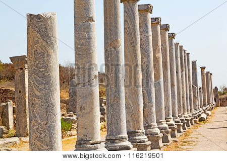 Stone  In  Perge Old  And  Roman Temple