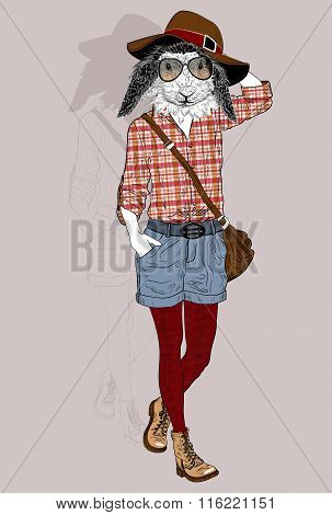 Fashion Rabbit Portrait