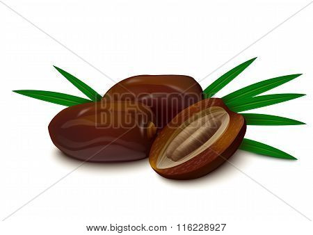 Dates on white background