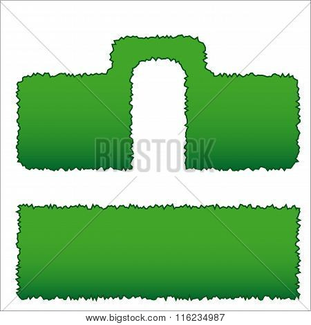 two types of hedges of green shrubs, pruning types, vector illustration