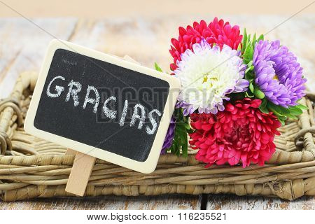 Gracias (which means thank you in Spanish) written on miniature blackboard and colorful aster flower