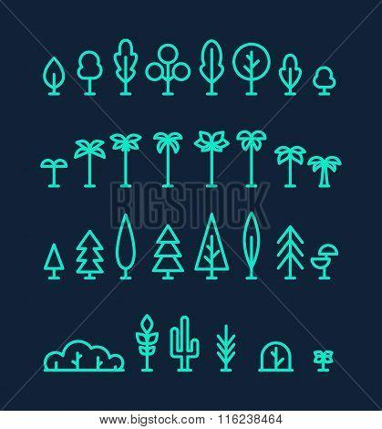 Set kinds trees palms fir spruces bushes linear