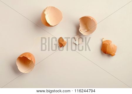 Shells Of Eggs