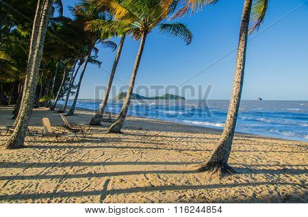 Beach In Palm Cove, Australia