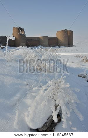 Ani Fortress Against Winter Landscape