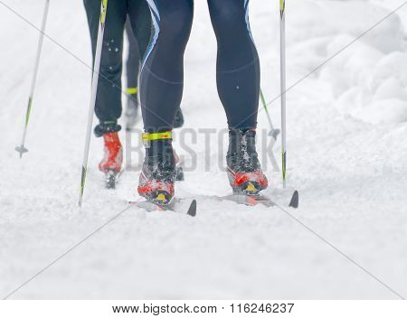 Close Up Of Colorful Skies, Feet And Legs Of Two Cross Country Skiers