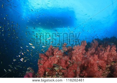 Coral reef and diving boat from underwater