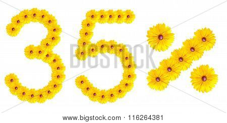 Figures 35% Of The Letters Written By Flowers
