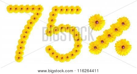 Figures 75% Of The Letters Written By Flowers