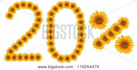 Figure Of 20% Of The Written Text Colors Sunflowers