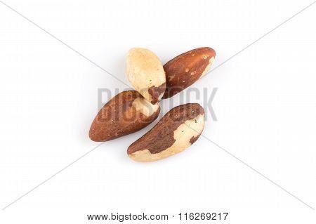 Brazil Nuts On White Close Up