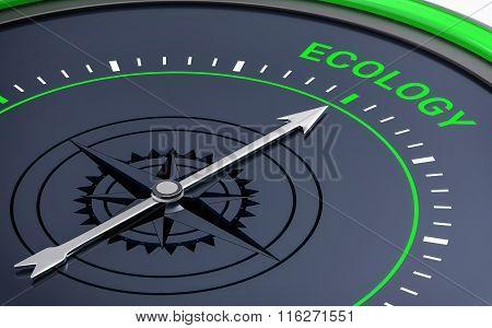 3D Compass. Ecology Word