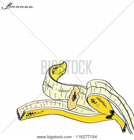 Vector Cartoon Banana.