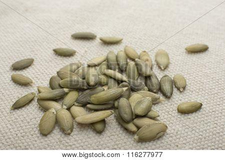 Closeup Pile Of Pumpkin Seeds