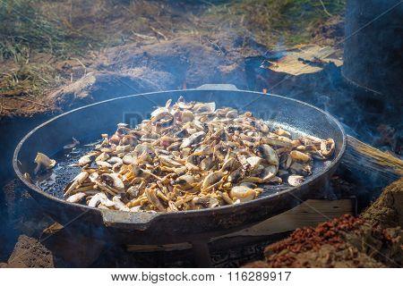 Mushrooms On Frying Pan