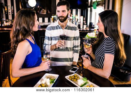 Group of friends having a glass of wine in a bar
