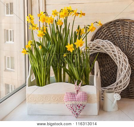Daffodils In The Balcony Boxes Next To The  Heart