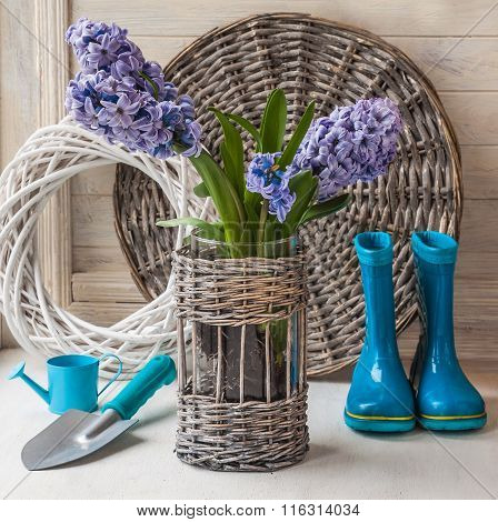 Hyacinths In A Basket, Rubber Boots And Garden Shovel