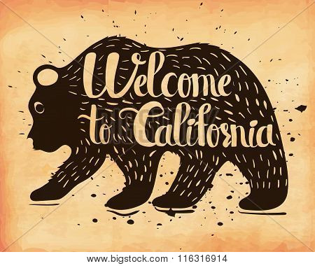 Vintage Handlettering The Poster California Usa. The Silhouette Of A Wild Bear With Text. Vector