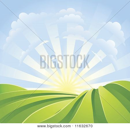 Idyllic Green Fields With Sunshine Rays And Blue Sky
